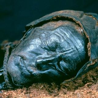 De 'man van Tollund' werd 2300 jaar geleden gewurgd en begraven in het veen, waar zijn lijk goed geconserveerd bleef.